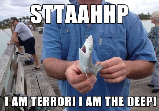 stahp-i-am-terror