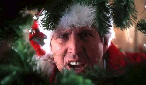 christmas-vacation-movie-cast-quotes-facts-1543601630